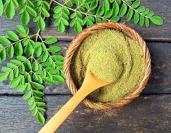 Moringa – Go Green for the Spring